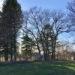 Beautiful Abandoned Rosenfeld! East Reserve. In Hanover.